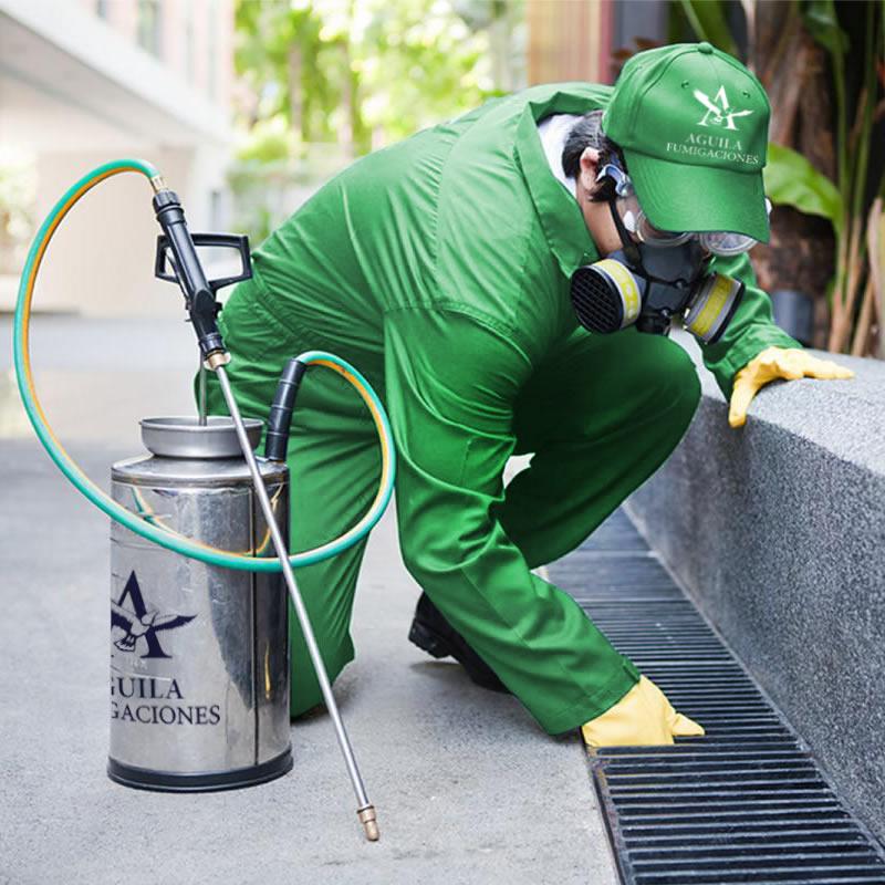 Buenas pr cticas de manufacturas de alimentos bpm for Manual de limpieza y desinfeccion en industria alimentaria